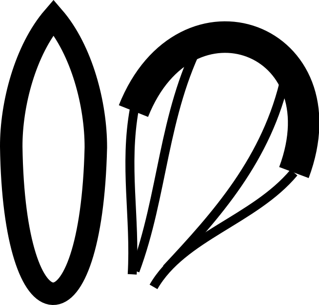 surfboard+kite2