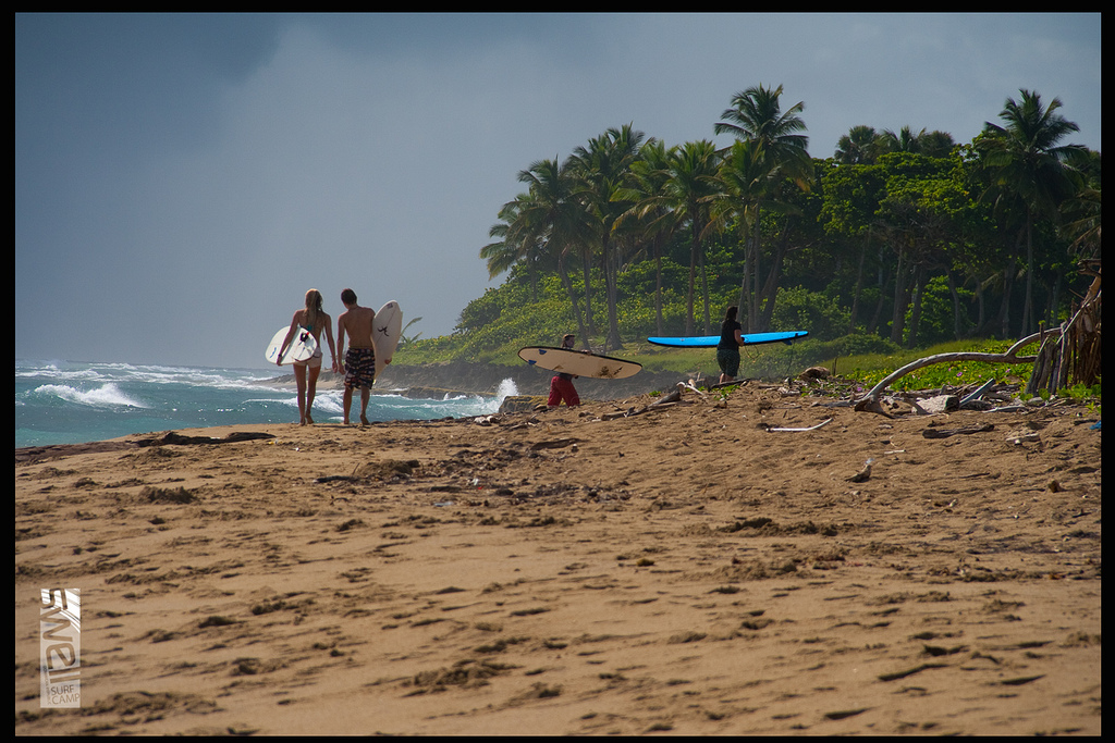 Surfer in Cabarete (Swell Surf Camp)